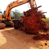 serviço de limpeza de terreno com escavadeira Raposo Tavares