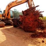serviço de limpeza de terreno com escavadeira Itapevi
